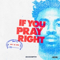 IF YOU PRAY RIGHT - Single - BROCKHAMPTON mp3 download