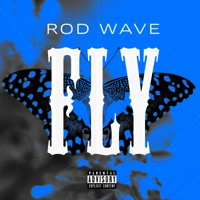 Fly - Single - Rod Wave mp3 download