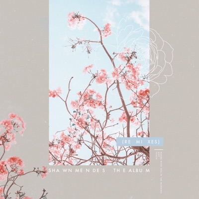 Where Were You In The Morning? (Kaytranada Remix) - Shawn Mendes mp3 download