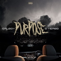 Purpose (feat. G Herbo) - Single - Calboy mp3 download