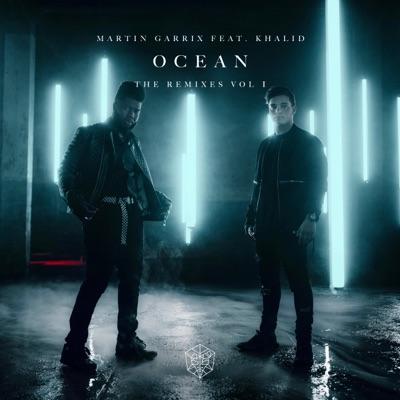 Ocean (Todd Helder Remix) - Martin Garrix Feat. Khalid mp3 download
