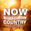 Various Artists - NOW That's What I Call Country, Vol. 12  artwork