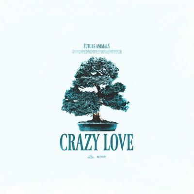 Crazy Love - Future Animals mp3 download