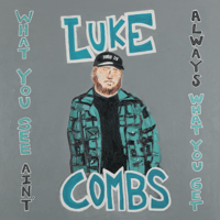 Download lagu Luke Combs - Forever After All