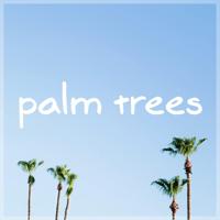 Palm Trees MBB