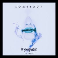 Somebody (Remixes) - EP - The Chainsmokers & Drew Love mp3 download