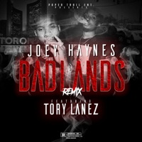 Badlands (Remix) [feat. Tory Lanez] - Single - Joey Haynes mp3 download