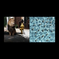 Legends of the Summer - EP - Meek Mill mp3 download