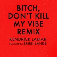 Bitch, Don't Kill My Vibe (Remix) [feat. Emeli Sandé] - Single - Kendrick Lamar mp3 download