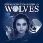 download lagu Selena Gomez & Marshmello Wolves
