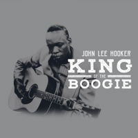 It Serves Me Right To Suffer (Live) John Lee Hooker