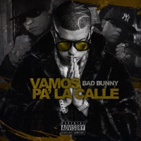 Vamos Pa' La Calle - Single - Bad Bunny & Hector El Father mp3 download