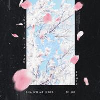Lost in Japan (Remix) Shawn Mendes & Zedd MP3