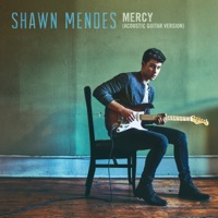 Mercy (Acoustic Guitar) - Single - Shawn Mendes mp3 download