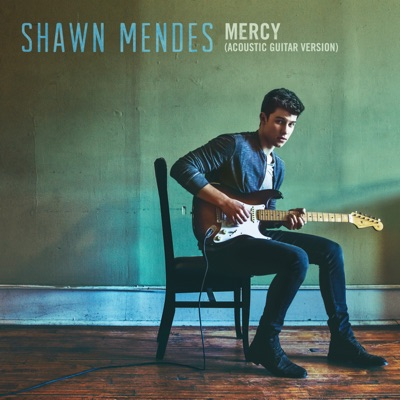 -Mercy (Acoustic Guitar) - Single - Shawn Mendes mp3 download