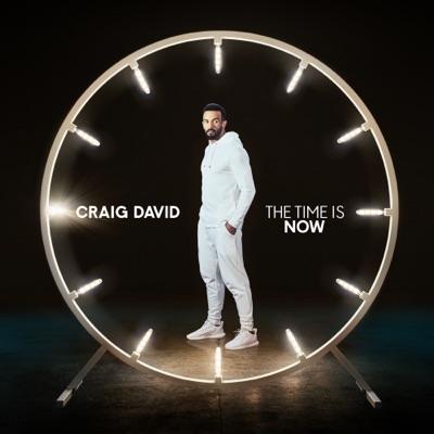I Know You - Craig David Feat. Bastille mp3 download