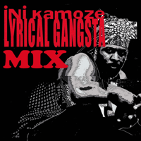 Here Comes the Hotstepper Ini Kamoze MP3