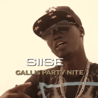 Gallis Party Nite Siise MP3