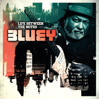 Tomorrow Never Lies Bluey