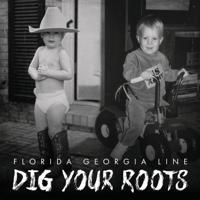 H.O.L.Y. Florida Georgia Line MP3