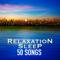 Music to Sleep Sleep Music Lullabies for Deep Sleep MP3