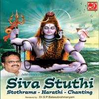 Bilvashtakam S. P. Balasubrahmanyam MP3
