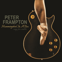 Shadow of My Mind Peter Frampton MP3