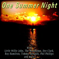 One Summer Night The Danleers MP3