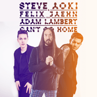 Can't Go Home (feat. Adam Lambert) [Radio Edit] Steve Aoki & Felix Jaehn