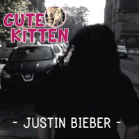 Justin Bieber Cute Kitten