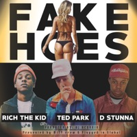 Fake Hoes (feat. Rich The Kid & D Stunna) - Single - Ted Park mp3 download