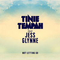 Not Letting Go (feat. Jess Glynne) Tinie Tempah MP3