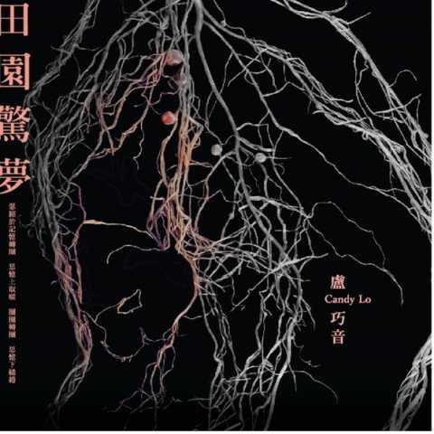 卢巧音 - 田园惊梦 - Single