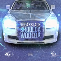 Shoulda Woulda - Single - Kodak Black mp3 download