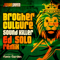 Sound Killer (Ed Solo Remix) Brother Culture
