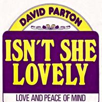 Isn't She Lovely David Parton MP3