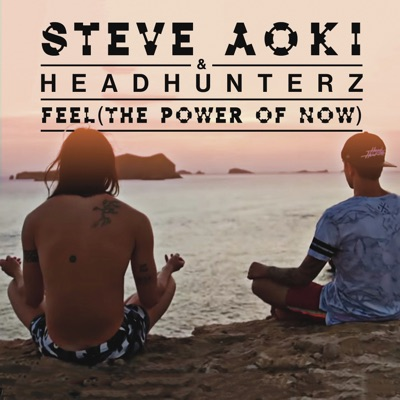 Feel (The Power Of Now) - Steve Aoki & Headhunterz mp3 download