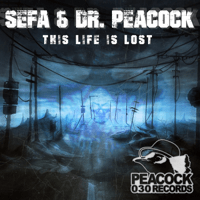 Trip to Turkey (feat. MC Lenny) Dr Peacock & Sefa