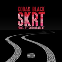 Skrt - Single - Kodak Black mp3 download