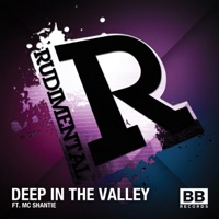 Deep in the Valley (Remixes) - EP - Rudimental mp3 download