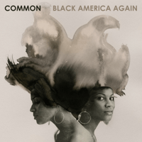 Letter to the Free (feat. Bilal) Common MP3