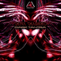 Shiva Shambho (Remix) Shiva Shambho MP3