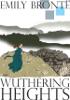Emily Brontë - Wuthering Heights  artwork