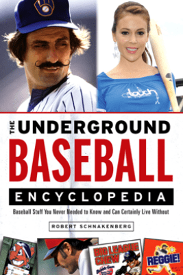 The Underground Baseball Encyclopedia - Robert Schnakenberg