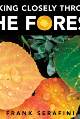 Looking Closely through the Forest - Frank Serafini