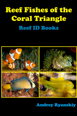 Reef Fishes of the Coral Triangle - Andrey Ryanskiy