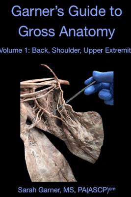 Garner's Guide to Gross Anatomy: Back, Shoulder, Upper Extremity - Sarah Garner