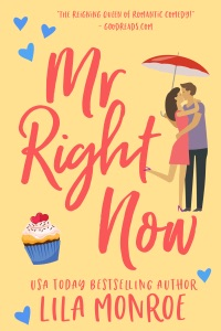 Mr Right Now - Lila Monroe pdf download