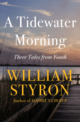 A Tidewater Morning - William Styron pdf download