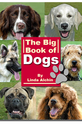 The Big Book of Dogs - Linda Alchin